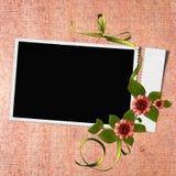 Marco para la foto o la enhorabuena con las flores Fotografía de archivo libre de regalías
