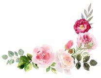 Marco pintado a mano de la acuarela con las flores florecientes stock de ilustración