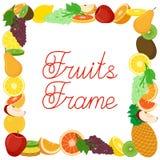 Marco plano del vector de las frutas Foto de archivo libre de regalías
