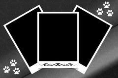 Marco polaroid de la foto blanco y negro ilustración del vector