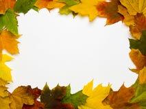 Marco rectangular de las hojas otoñales Imágenes de archivo libres de regalías