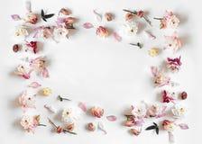 Marco rectangular hecho de rosa y de la flor de campana beige fotos de archivo