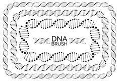 Marco rectangular humano de la molécula de la cadena de la DNA o de la hélice del genoma libre illustration