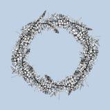 Marco redondo con la sauce-hierba aislada ilustración del vector