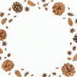 Marco redondo de la Navidad o del Año Nuevo con los conos del pino y anís en el fondo blanco Endecha plana, visión superior Imagen de archivo