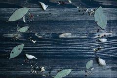 Marco redondo de las hierbas y de las especias en el fondo de madera azul, visi?n superior, lugar para el texto imagen de archivo