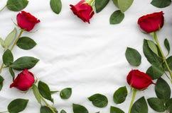 Marco redondo de rosas, de ramas y de hojas Mofa plana de la endecha para arriba Foto de archivo