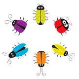 Marco redondo del círculo lindo del insecto Personaje de dibujos animados divertido Fotos de archivo libres de regalías