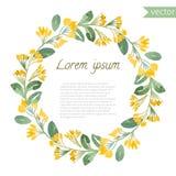 Marco redondo floral de la acuarela pintada a mano Imagen de archivo