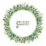 Marco redondo verde con las plantas de la acuarela Colección pintada a mano del verdor ilustración del vector