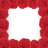 Marco rojo de las rosas Foto de archivo