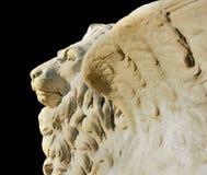 marco SAN λιονταριών Στοκ εικόνες με δικαίωμα ελεύθερης χρήσης