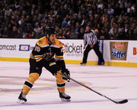 Marco Sturm Boston Bruins #16. Royalty Free Stock Images