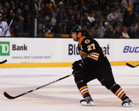 Steve Begin Boston Bruins #27. Royalty Free Stock Image