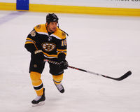 Marco Sturm, Boston Bruins Stock Photography