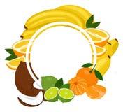 Marco tropical del fondo de las frutas Las frutas clasificadas arreglaron en un círculo en el fondo blanco, espacio de la copia p libre illustration