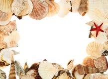 Marco vacío hecho de las conchas marinas Fotos de archivo