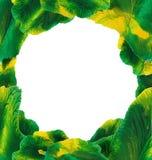 Marco verde-amarillo del monotipo de la acuarela Foto de archivo libre de regalías