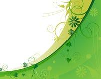 Marco verde claro de la planta Fotos de archivo
