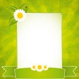 Marco verde del eco Foto de archivo libre de regalías