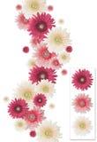 Marco vertical de la flor imagenes de archivo