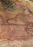 Marco vertical muy bonito de la roca agrietada con el fondo natural de la textura de la planta verde Fotografía de archivo