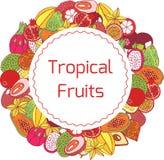 Marco y etiqueta dibujados mano colorida del círculo con exótico tropical Imagenes de archivo