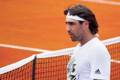 Marcos Baghdatis Photographie stock