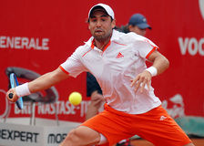 Marcos Baghdatis ATP Tennis player. Marcos Baghdatis pictured in action during the match against Fabio Fognini counting for BRD Nastase-Tiriac Trophy Royalty Free Stock Photos