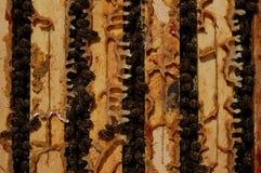 Marcos de la abeja Fotos de archivo
