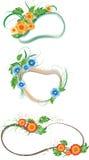 Marcos de la flora Foto de archivo libre de regalías