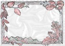 Marcos de la naturaleza Imagen de archivo libre de regalías