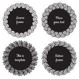 Marcos de la naturaleza del círculo (negro) con el sistema del vector de las hojas (tilo, roble, castaña, sauce) Estilo de la ven Imagen de archivo