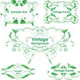 Marcos de la vendimia. Elementos del diseño del vector. Verde de Eco Imagen de archivo