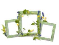 Marcos de madera adornados por las flores del resorte Imagen de archivo libre de regalías