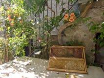 Marcos del peine de la miel en el ajuste italiano del pueblo con sol Imagenes de archivo