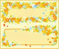 Marcos florales Imagen de archivo