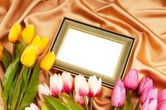 Marcos y flores de los tulipanes Imagen de archivo