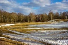 Marcowy krajobraz w Rosja Obrazy Stock