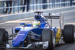 Marcus Ericsson Jeres 2015 Royalty Free Stock Photos