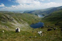 Mardale Valley Royalty Free Stock Photos