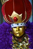 Mardi Gras Costume Stock Image