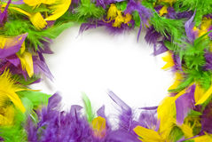 Mardi Gras Feather Frame Royalty Free Stock Photo