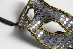 Mardi Gras Mask arkivbilder