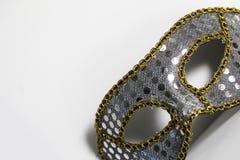 Mardi Gras Mask royaltyfri bild