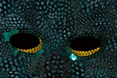 Mardi Gras Mask. Mardi Gras face mask details stock photo