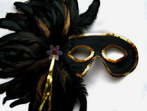 Mardi Gras Mask Royalty Free Stock Photography