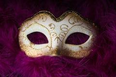 Mardi Gras Mask Imágenes de archivo libres de regalías