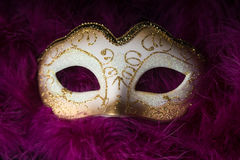Mardi Gras Mask Royalty-vrije Stock Afbeeldingen