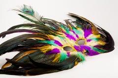 Mardi Gras Mask Stock Image